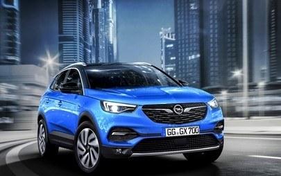 Opel Grandland X Kış Aktiviteleri